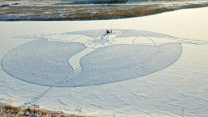 снежный дракон