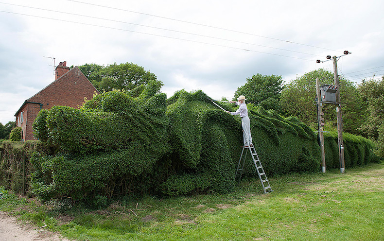 дракон в Англии