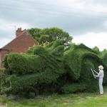 Житель графства Норфолк (Англия) 13 лет растит в своем саду огромного дракона