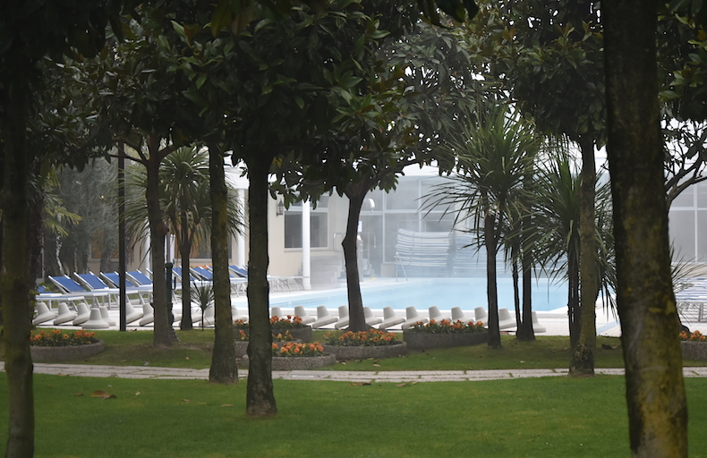 бассейн Andromeda в саду Hotel Metropole