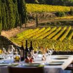Год гастрономии и винного туризма в Каталонии