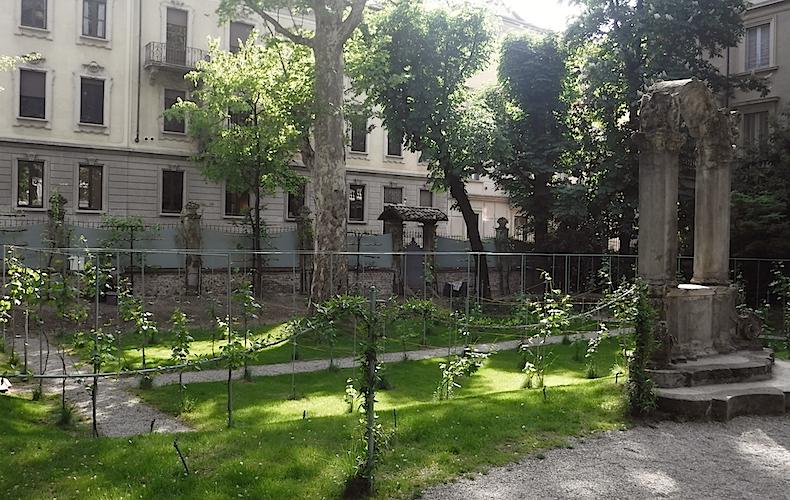 виноградники Леонардо да Винчи в La Casa degli Atellani,