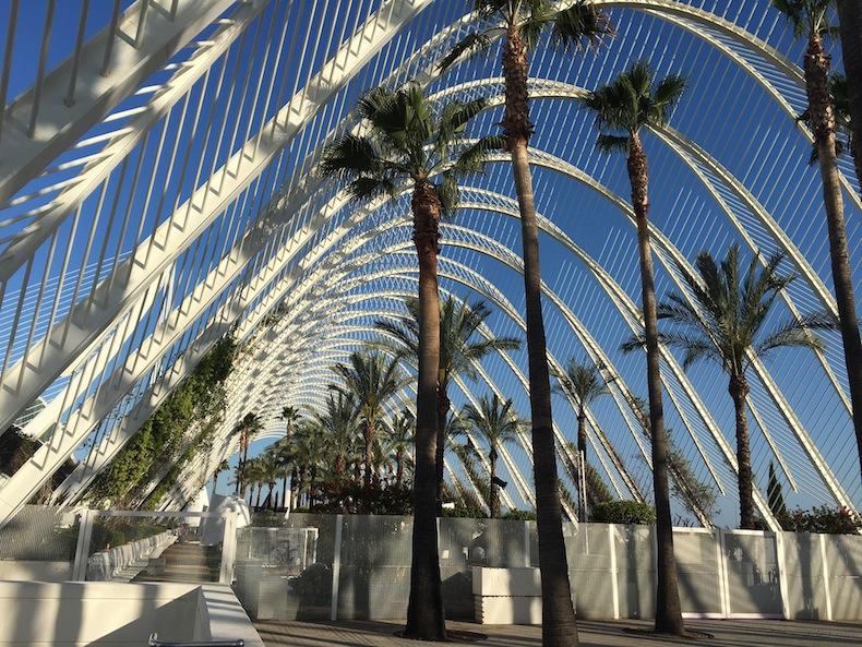 сад в Городе науки и искусства