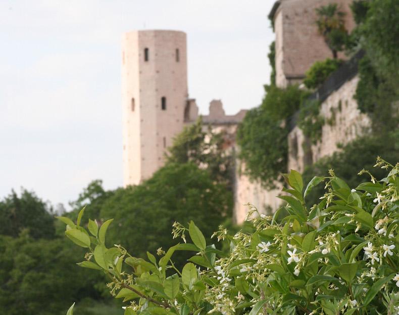 Вид на одну из башен Проперцио