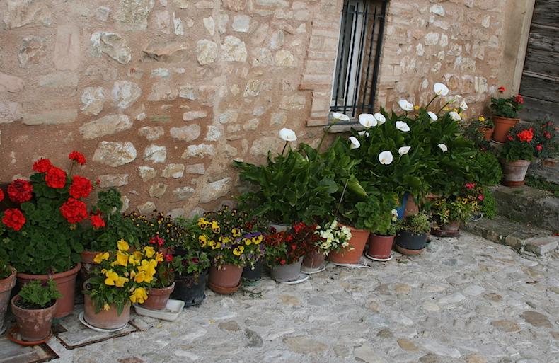 цветочные горшки на улицах Спелло