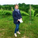 На виноградники Просекко к итальянской графине