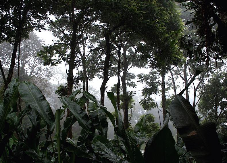 Парк Ла Пас, Коста-Рика
