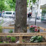 Парижане превратят свой город в сад