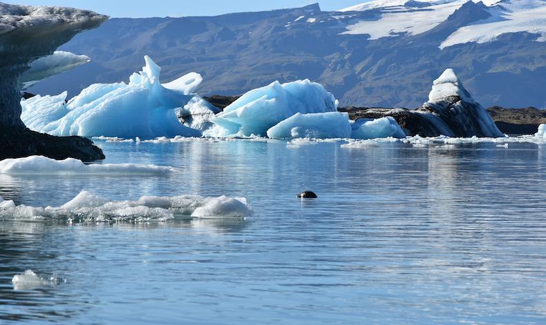 Йёкюльсаурлоун (Jökulsarlon) — лагуна айсбергов и Исландии