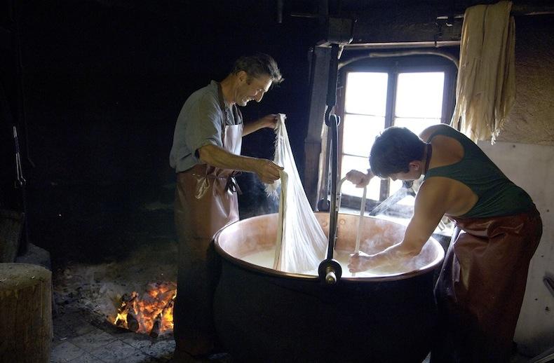 производство сыра этив на ферме
