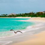 One&Only Ocean Club: официальный райский остров на Багамах