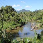 Синхараджа: поездка в дождевой лес Шри-Ланки