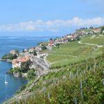Швейцарское вино: легендарная шасла и виноградники Лаво