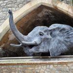 Страшная история королевского зверинца в Лондоне: как слонов вином поили
