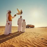 Зачем я не птица: соколиный госпиталь в Абу-Даби