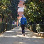 Почему в Севилью нужно ехать в январе и чем заняться в городе