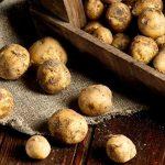 Самый дорогой картофель в мире: французский деликатес La Bonnotte
