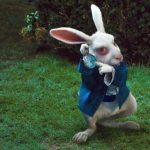 Тайна белого кролика из «Алисы в стране чудес»