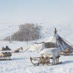 Ради чего отправиться на Ямал: Салехард, заповедная тундра и поездка к ненцам